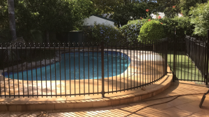 Curved Pool Fencing Adelaide